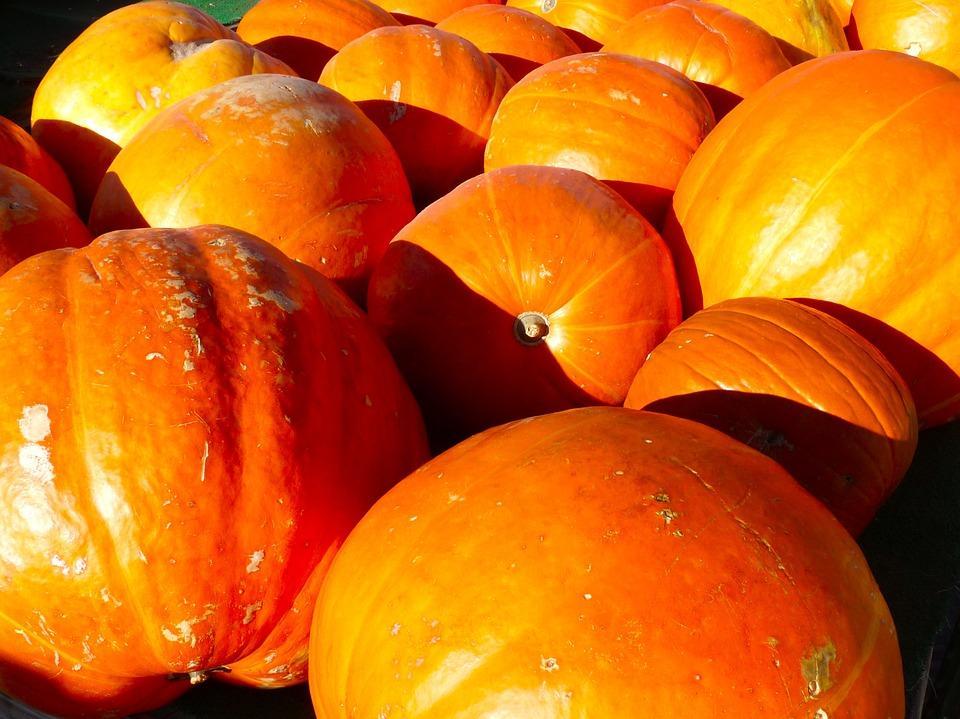 pumpkin-993289_960_720
